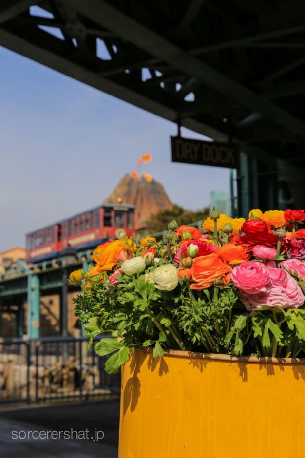 ドラム缶に飾られた花とプロメテウス火山