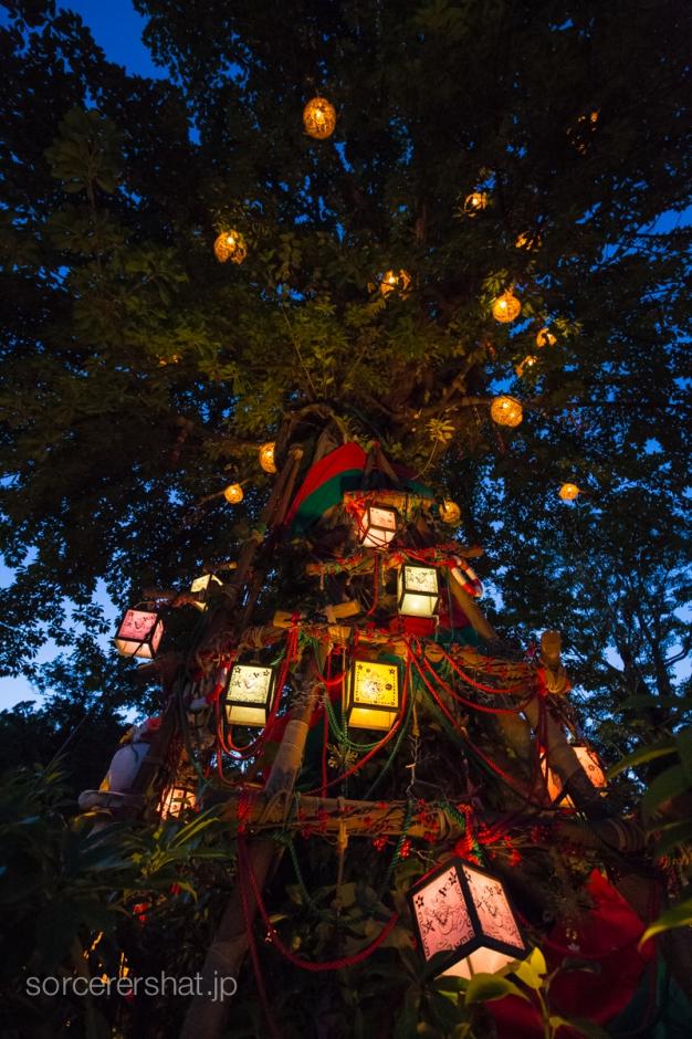 見上げてみると素敵なロストリバーデルタのクリスマスツリー